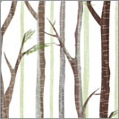 Natural Forest 06
